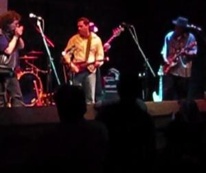 Strobel Rambler Professional Travel Guitar on stage