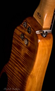 Honey Rambler Travel Bass back view