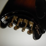 Lefty Rambler® Bass with Gold D4 Bridge