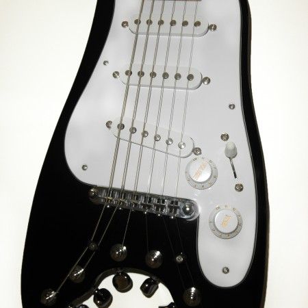 Strobelcaster in Black with White guard