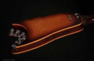 Rambler Hollowbody Portable Guitar with detachable neck