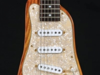 Best Professional Electric Guitar