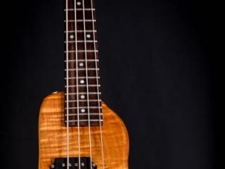 Rambler Custom Travel Bass - HoneyBurst