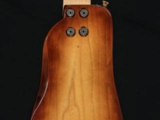 Ebony Electric Guitar
